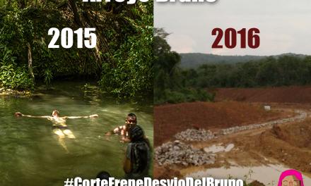 ¿Por qué Cerrejón tendría que renunciar al desvío del Arroyo Bruno?