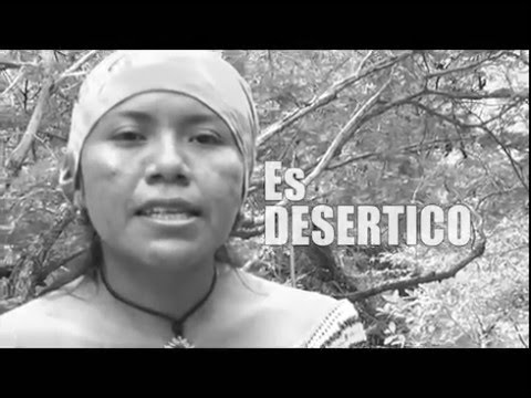 Arroyo Bruno – #ElAguaEsNuestra