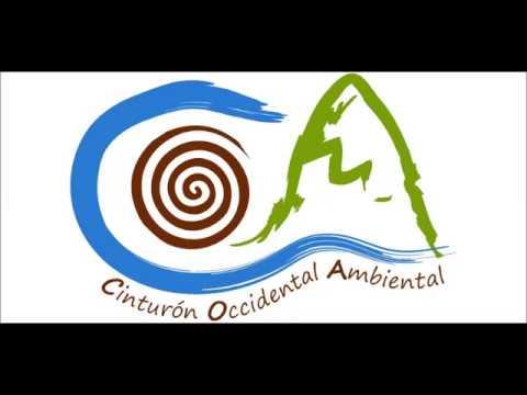Exposición de Motivos Consulta Popular Pueblorrico Mayo 2017
