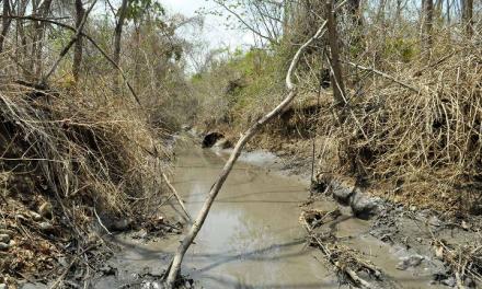 De las ventajas corporativas a las zonas de sacrificio minero. Minería en Colombia 2015