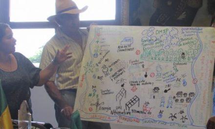 ¡NO ES DE FORMA, ES DE FONDO!: Los reparos de la ANLA y el rechazo del COA a la AngloGold Ashanti